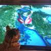 猫のあるある テレビ画面の蝶々を捕まえたい♀猫ハッピーちゃん