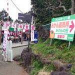 20150303日帰り旅行記3 松田山桜まつりにておいしいみかんを試食し購入