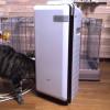 ペット臭対策にオススメ! 我が家の脱臭機 富士通ゼネラルHDS-302A(HDS-302Gの旧型)のご紹介