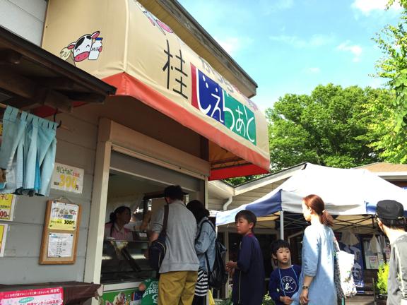hapeace_May 20 201515