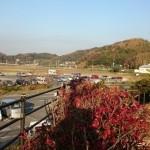 20141122車中泊旅行記2 千葉県南房総市にある道の駅富楽里とみやまでおいしい朝ごはん♪
