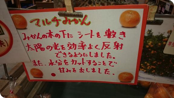 hapeace_Dec 08 201403
