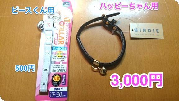 hapeace_Sep_15_201401.jpg