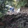 20141122車中泊旅行記11 ビーグルかえでちゃんと鋸山日本寺散策