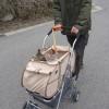 猫同伴の旅行、お出かけで使うカート、バッグ