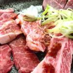 車中泊なら宿代ないからおいしいお肉を食べちゃおう! 栃木に行ったらとちぎ和牛でしょ!(20150503車中泊旅行記13)