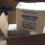 我が家で使用しているスーパーワイドで激安なおすすめペットシーツ「うす型プラス ダブルワイドペットシーツ 220枚(55枚×4個)」のご紹介